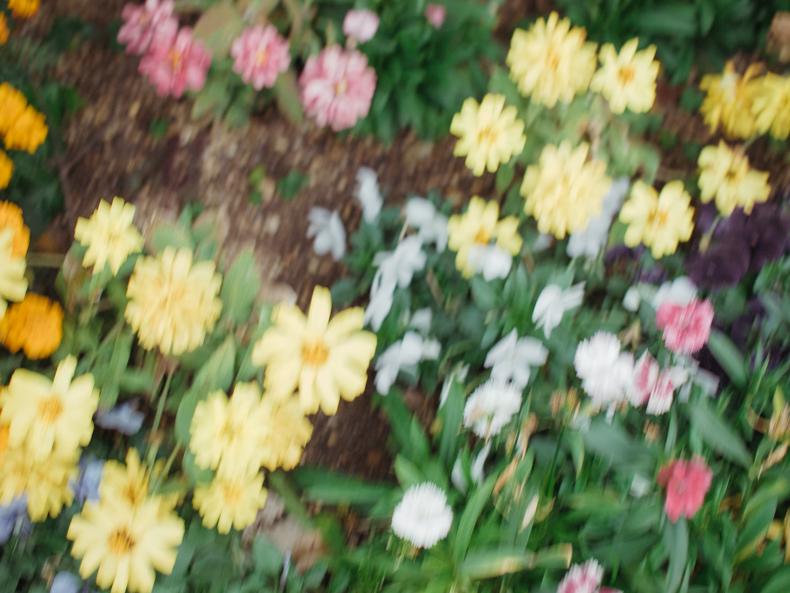 0107blog 2 - ヒカリカメラ