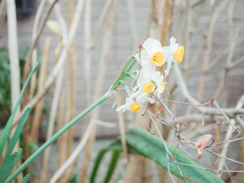 0107blog 5 - ヒカリカメラ